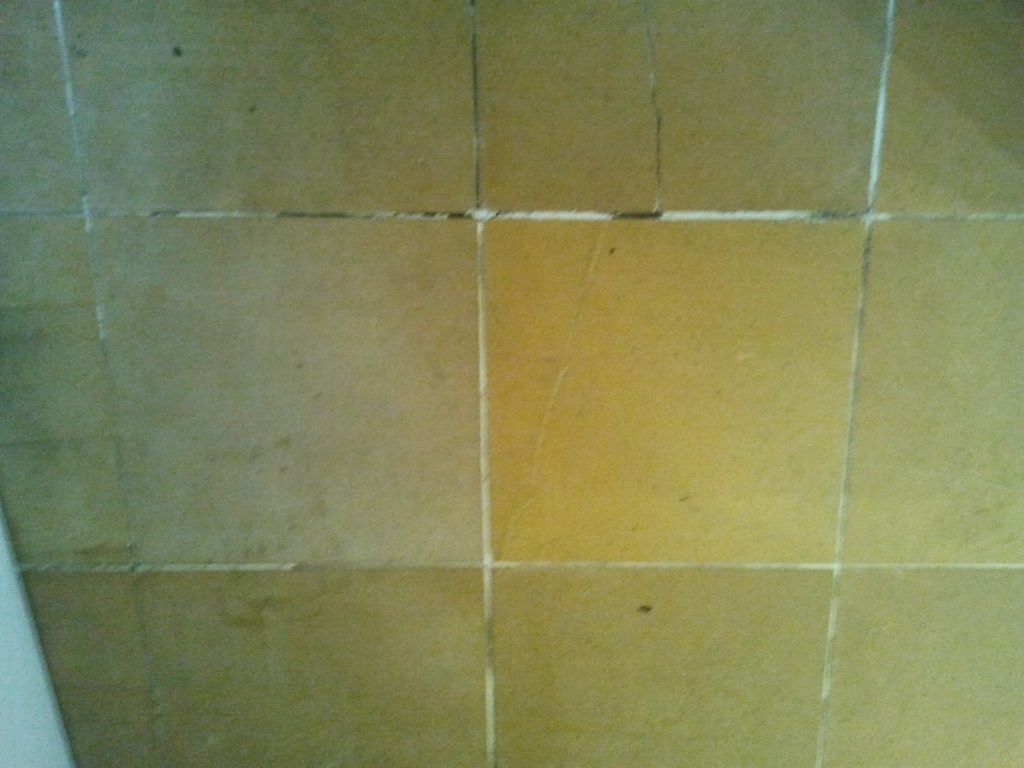 Indian Orange Slate Floor Before Cleaning