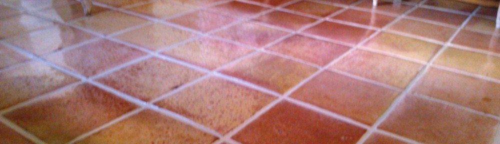 Satillo Tiled Floor after cleaning