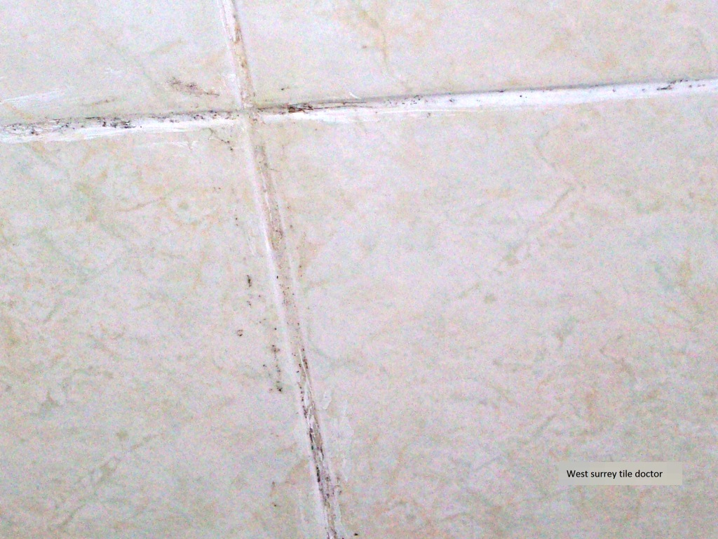 Epsom Downs Shower Cubicle MouldyGrout